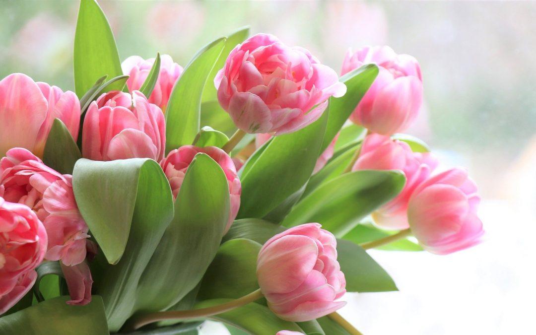 Идеи, с които да зарадвате дамите в офиса за 8-ми март